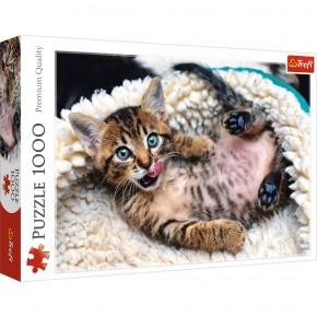Puzzle Trefl 1000 Pisicuta vesela