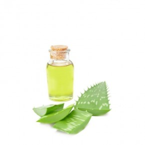 Perna cu gel cu Aloe-Vera Gruenspecht 187-00