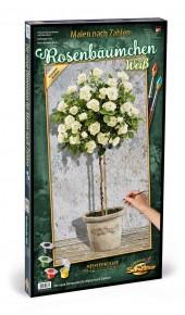 Kit pictura pe numere Schipper trandafirii albi